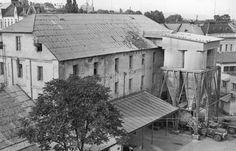 Історичні кадри: як в Ужгороді працював унікальний водяний млин (ФОТО)