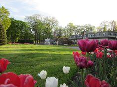 Quebec City, Parcs, North America, Photos, Romance, Canada, Spring, History Websites, Spaces