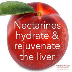 Nectarines hydrate & rejuvenate the liver🌟 Learn more about the healing powers of nectarines in my book Liver Rescue available at Barnes &… Health Facts, Health Diet, Health And Nutrition, Health Fitness, Liver Diet, Healthy Liver, Liver Cleanse, Cleanse Detox, Fatty Liver