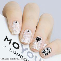 Пластина для стемпинга MoYou London Enchanted 15 - купить с доставкой по Москве, CПб и всей России.