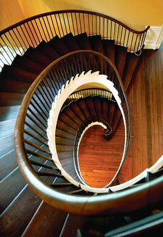 Nathaniel Russell House Staircase in Charleston, SC Stairs And Staircase, Take The Stairs, Grand Staircase, Staircase Design, Spiral Staircases, Beautiful Architecture, Architecture Details, Federal Architecture, Russell House