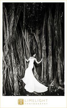 Waldrof Astoria Casa Marina Key West Fl Limelight Photography Weddings