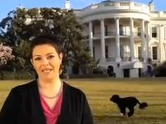 FDOTUS (First Dog of the United States) photobomb.  :)