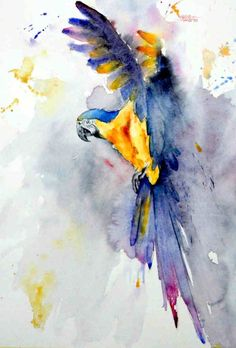 Gerard Hendriks - watercolor blue & yellow Macaw #watercolorarts