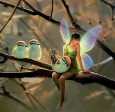 We live in a mystical place, of course fairies exist. Some are gentle, some are well...not so gentle. Talking from experience here