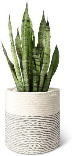12 inch Woven Cotton Planter Pots Planters Plants Hanger Rope | Etsy Plant Basket, Basket Planters, Rope Basket, Indoor Planters, Indoor Outdoor, Planter Pots, Indoor Gardening, Pot Storage, Storage Baskets