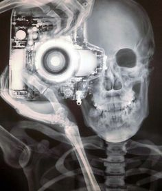 a skeleton's photoshoot