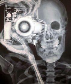 a skeleton's photoshoot