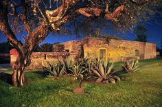 Haciendas de Jalisco