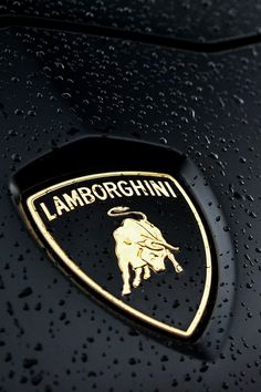 ♕ The Luxury Side of Life ♕ Lamborghini Aventador emblem Lamborghini Aventador Lp700 4, Best Lamborghini, Royce, Bugatti, Maserati, Mercedes Auto, Porsche Auto, Luxury Car Logos, Luxury Cars
