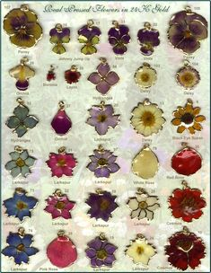 pressed flowers | The Meaning of Flowers • The Meaning of Leaves • General Jewelry ...