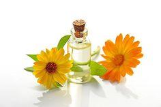 PLANTELE MEDICINALE sunt armele esentiale ale medicinii naturiste.  Datorita efectelor MEDICINALE pe care unele plante s-au dovedit a le avea, oamenii le-au ales in scopul de a vindeca sau macar ameliora diverse AFECTIUNI.