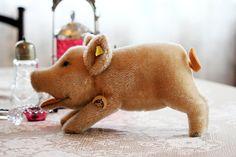 Steiff Pig