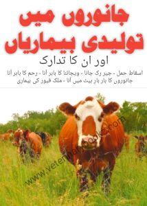 Janwaro Mein Touleedi Bemariyan Or ilaaj Free Pdf Books, Free Ebooks, Medicine Book, Dairy Form, Ali, Science, Wallpaper, Wallpapers, Ant