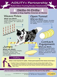 Dog Agility Course - Dog Agility Equipment Tips - Doggie Woof - AGILITY= Partnership – Build A More Trusting Bonded Relationship with Your Dog - Agility Training For Dogs, Training Your Puppy, Dog Training Tips, Potty Training, Training Schedule, Toilet Training, House Dog, Dog Minding, Dog Hacks