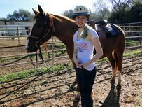 Equine 2 Hour Pony Party: $250 for up to 10 children (ages 4 to 14), each additional child is $20.  We have a maximum capacity of 20 children.