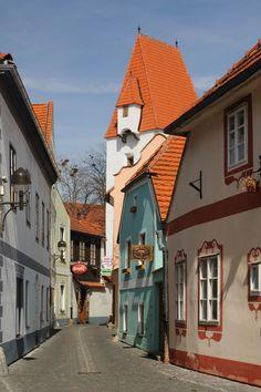 Ćeské Budějovice
