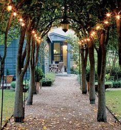 string lights, this is so cool love it.