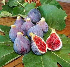 Healthy Fruits And Vegetables, Fruit And Veg, Fig Fruit Tree, Growing Fig Trees, Fig Varieties, Figs Benefits, Fruit Picture, Fruit Photography, Beautiful Fruits