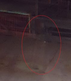 (PHOTO: JIMMY DEVLIN / SWNS.COM)  'Ghost' Of Woman Coal Sorter Pictured In Lady Victoria Pit Mine
