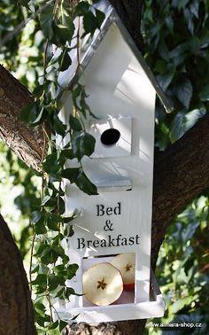 Bird Feeder/ Bird House. Cute!