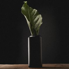 obj. 2.3 // redesigned and hand painted // black ceramic vessel