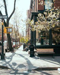 Spring in #newyorkcity