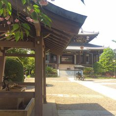 Guide to Visiting Shrines and Temples in Japan
