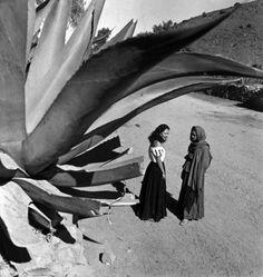 El Magüey, México, 1936