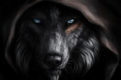 wolf fantasy poster by from collection. Anime Wolf, Fantasy Wolf, Fantasy Art, Marshmello Wallpapers, Eyes Wallpaper, Animal Wallpaper, Wolf Artwork, Werewolf Art, Wolf Love