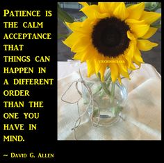 """Patience is the calm acceptance that things can happen in a different order than the one you have in mind."" ~ David G. Allen  #quote"