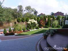 Mój przyszły ogród - strona 67 - Forum ogrodnicze - Ogrodowisko
