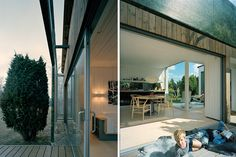 Swedish Juniper House mirrors its surroundings with a clever v...