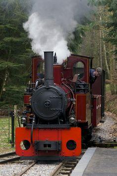 Elouise, Narrow Gauge Steam Train | Flickr - Photo Sharing!