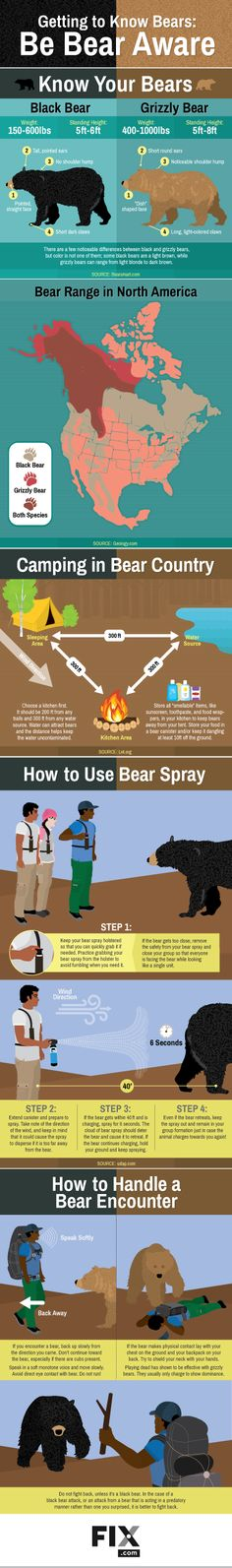 Read on to find out how to handle a bear encounter, whether it's a black bear or a grizzly!