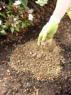 Lay a 1-inch drainable base of pea gravel topped by ½ inch of coarse sand in each hole.