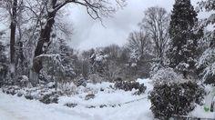 Miraj de iarnă în Botanică
