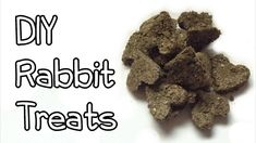 How to Make Rabbit Treats. Rabbit treats can be purchased at stores but it can also be fun to make your own. Rabbit treats can be baked or made raw. Make sure you know what precautions to take when it comes to making rabbit treats. Rabbit Food, Pet Rabbit, Homemade Rabbit Treats, Raising Rabbits, Bunny Care, Rabbit Hutches, Pet Treats, How To Make Homemade, Rabbits