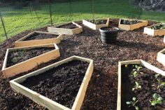 raised bed garden pattern. Built by Delena and Lucy | Cabin Organic