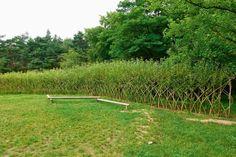 vrbové ploty - Hledat Googlem