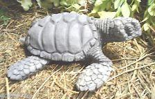 latex w plastic backup realistic sea turtle concrete plaster mold
