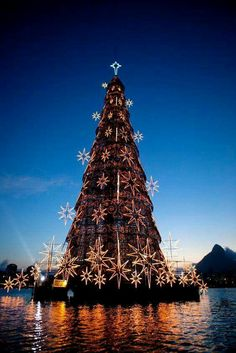 World's largest floating Christmas Tree.  Rio De Janeiro