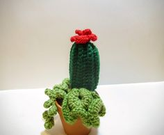 Multi Cactus Collection in Pot - Small Crochet Plant - Fake Succulent  Decoration - String of Pearls - Coral Cactus - Barrel Cactus - BoHo