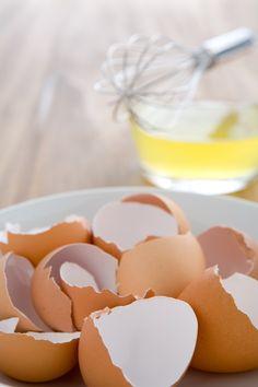 15 Surprising Uses for Eggshells!