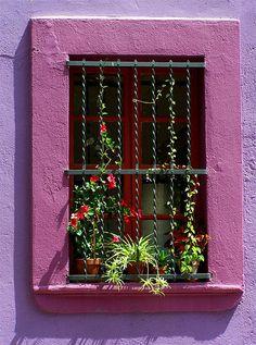 Window in Barcelona near Parc Guelle.   http://www.flickr.com/photos/k2yhe/4506992432/in/set-72157623697365203