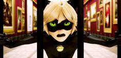 Miraculous Ladybug GIF - Chat Noir