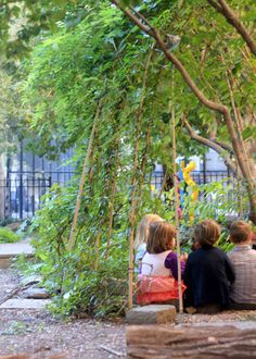 Quick article with some tips for building school gardens. Also, I love how these vines come up to shelter the sitting area.