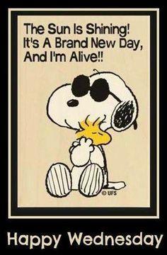 It is raining, I'm Alive, It's a brand new day. I'm Alive!! Happy Wednesday!!!