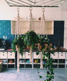 Hanging Plants, Making Ideas, Macrame, Inspiration, Diy, California, Macrame Tutorial, Dekoration, Biblical Inspiration