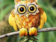 hibou ananas